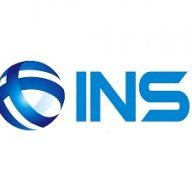 ins consulting